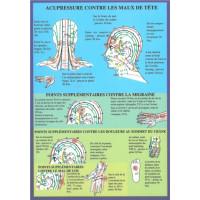 Perles essentielles lavande officinale - 20ml - bio