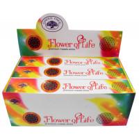 Encens Green Tree Flower of Life - 15 grs