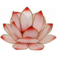 Photophore lotus - coloris rose