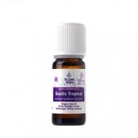 Huile Essentielle Basilic Tropical Bio 10 ml