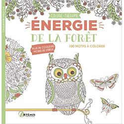 ENERGIE DE LA FORET